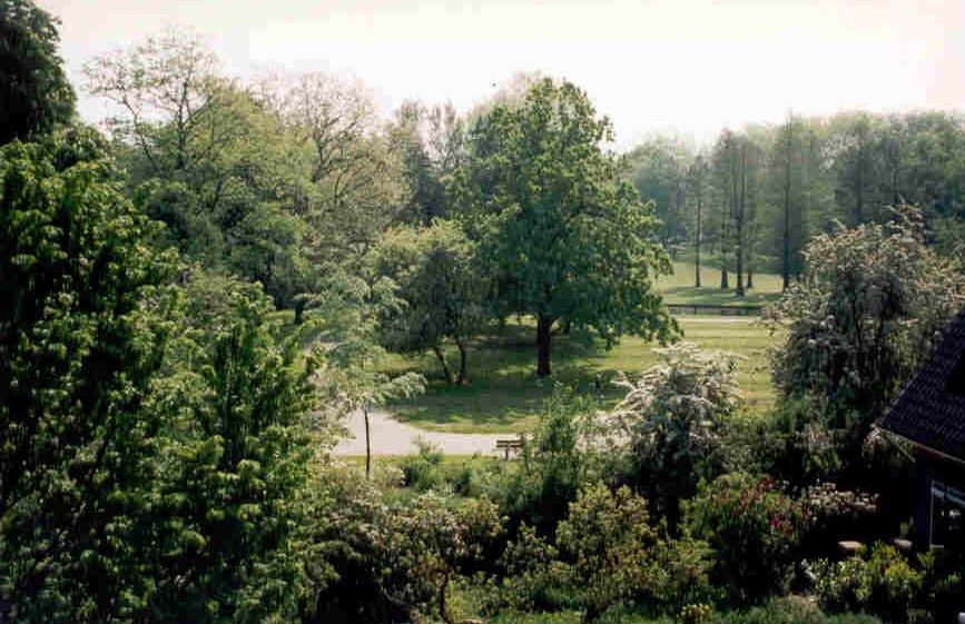 Rozenburgpark in de zomer